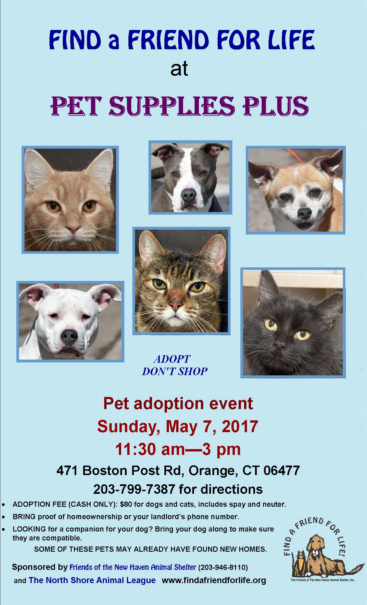 Full Adoption Event